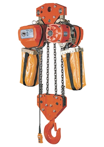 10T (4Fall) Electric Chain Hoist